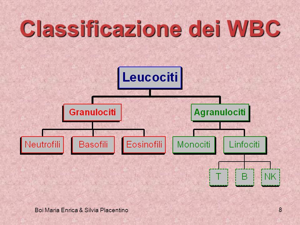 Boi Maria Enrica & Silvia Placentino 8 Classificazione dei WBC