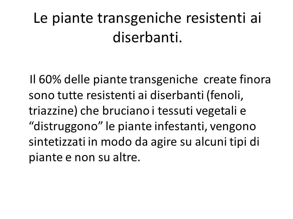 Il 60% delle piante transgeniche create finora sono tutte resistenti ai diserbanti (fenoli, triazzine) che bruciano i tessuti vegetali e distruggono l