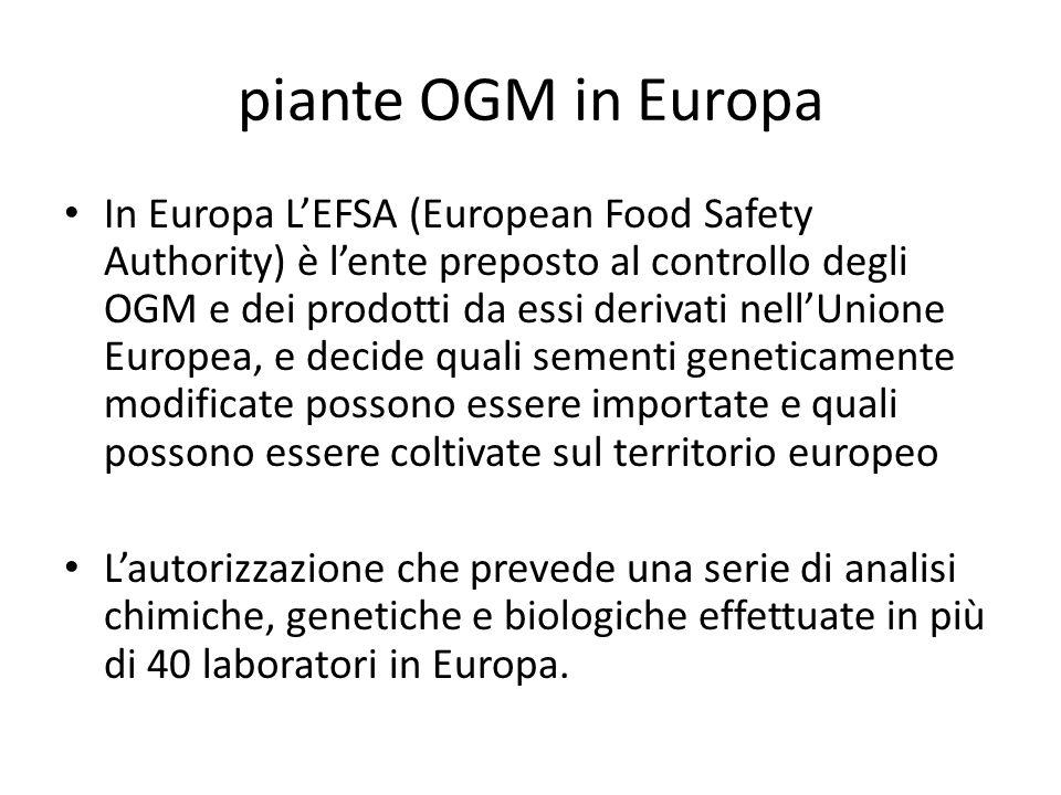 piante OGM in Europa In Europa LEFSA (European Food Safety Authority) è lente preposto al controllo degli OGM e dei prodotti da essi derivati nellUnio