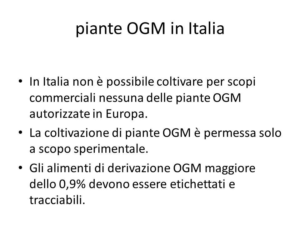 piante OGM in Italia In Italia non è possibile coltivare per scopi commerciali nessuna delle piante OGM autorizzate in Europa. La coltivazione di pian