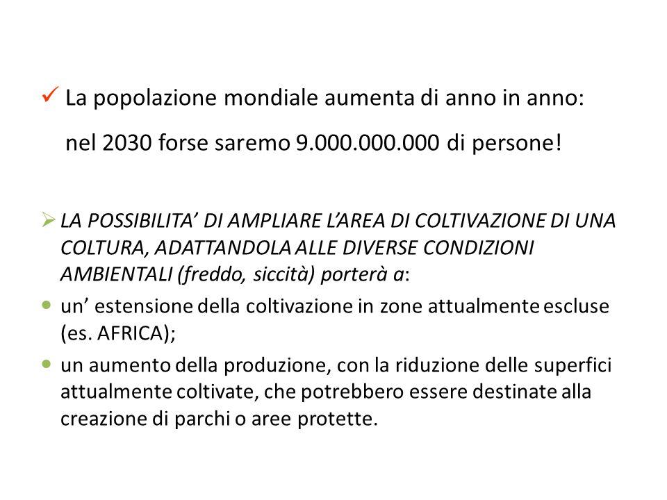 La popolazione mondiale aumenta di anno in anno: nel 2030 forse saremo 9.000.000.000 di persone! LA POSSIBILITA DI AMPLIARE LAREA DI COLTIVAZIONE DI U
