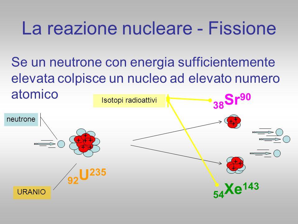 La reazione nucleare - Fissione Se un neutrone con energia sufficientemente elevata colpisce un nucleo ad elevato numero atomico + + + + + + + + + + +