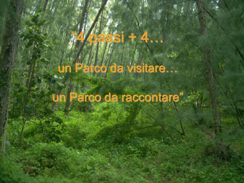 4 passi + 4… un Parco da visitare… un Parco da raccontare