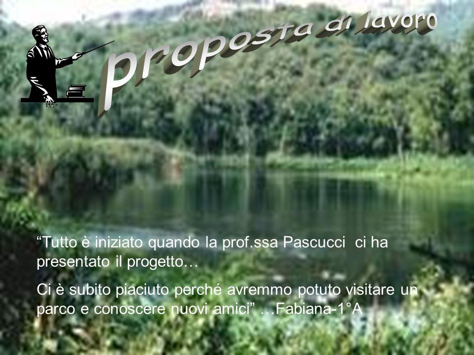 Tutto è iniziato quando la prof.ssa Pascucci ci ha presentato il progetto… Ci è subito piaciuto perché avremmo potuto visitare un parco e conoscere nu