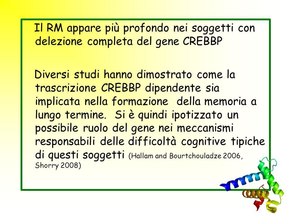 Il RM appare più profondo nei soggetti con delezione completa del gene CREBBP Diversi studi hanno dimostrato come la trascrizione CREBBP dipendente si