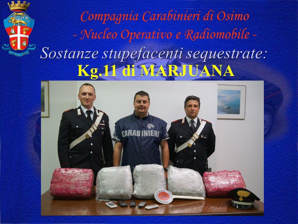 Sostanze stupefacenti sequestrate: Compagnia Carabinieri di Osimo - Nucleo Operativo e Radiomobile - Kg.11 di MARJUANA