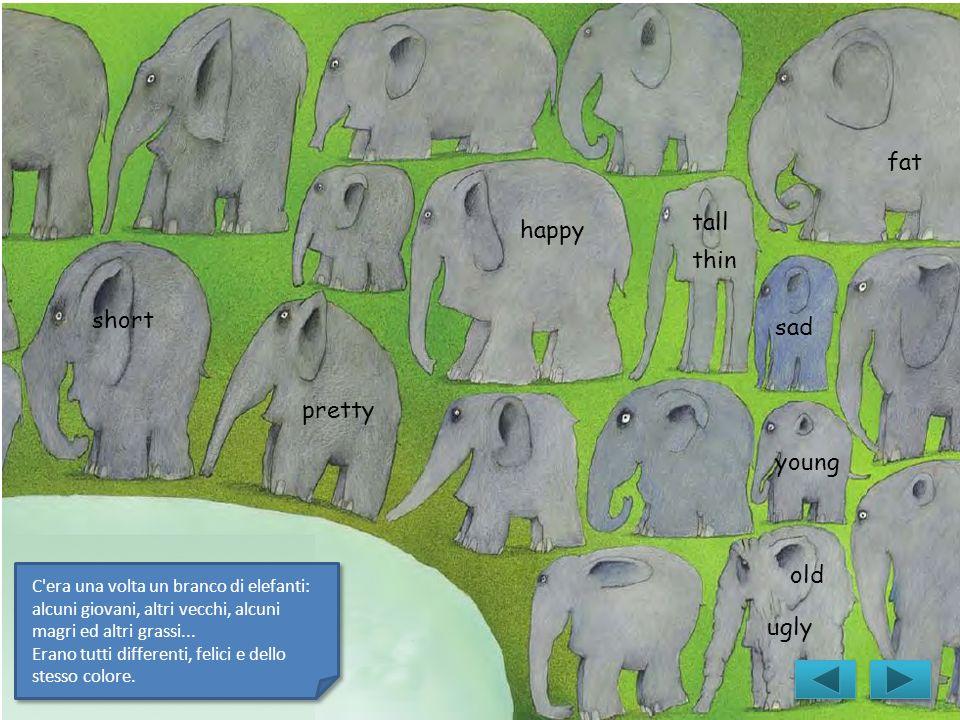 sad happy ugly thin pretty young fat tall short old C'era una volta un branco di elefanti: alcuni giovani, altri vecchi, alcuni magri ed altri grassi.