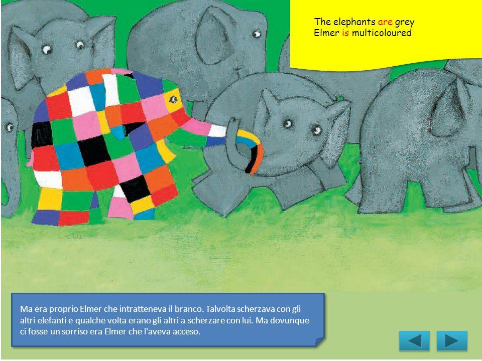 Ma era proprio Elmer che intratteneva il branco. Talvolta scherzava con gli altri elefanti e qualche volta erano gli altri a scherzare con lui. Ma dov