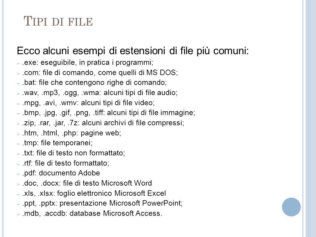 T IPI DI FILE Ecco alcuni esempi di estensioni di file più comuni:.exe: eseguibile, in pratica i programmi;.com: file di comando, come quelli di MS DO