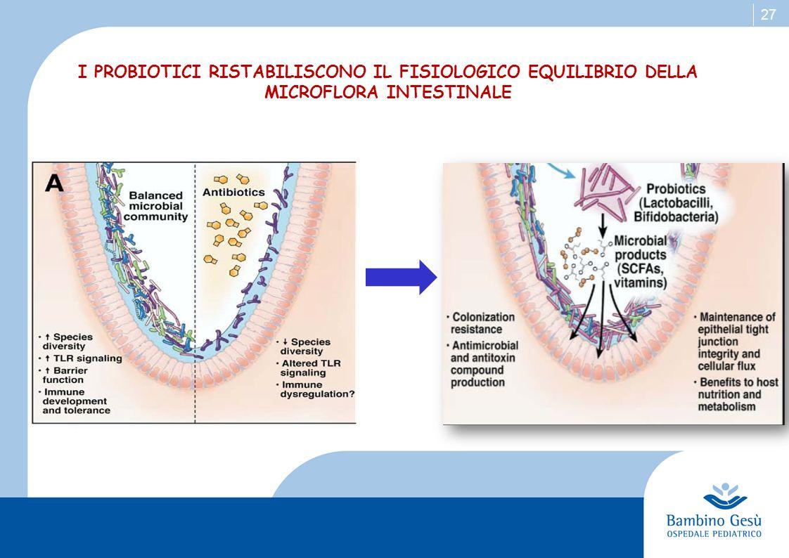 27 I PROBIOTICI RISTABILISCONO IL FISIOLOGICO EQUILIBRIO DELLA MICROFLORA INTESTINALE