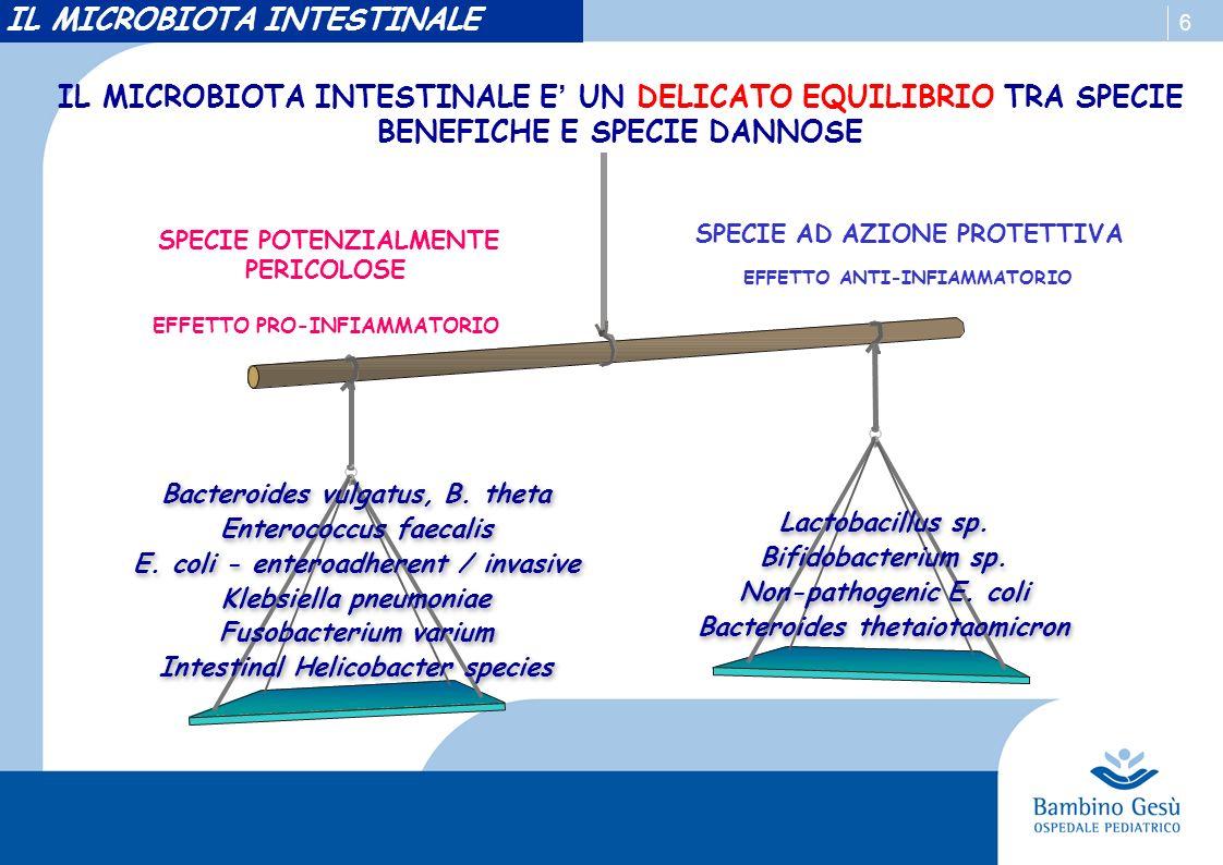 6 IL MICROBIOTA INTESTINALE E UN DELICATO EQUILIBRIO TRA SPECIE BENEFICHE E SPECIE DANNOSE Bacteroides vulgatus, B. theta Enterococcus faecalis E. col