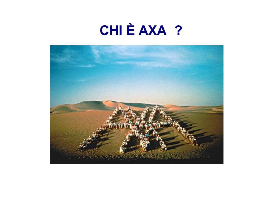 MPS – 1 febbraio 2008 – 2 CHI È AXA