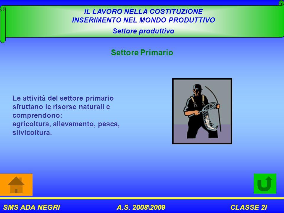 SMS ADA NEGRI A.S. 2008\2009 CLASSE 2I IL LAVORO NELLA COSTITUZIONE INSERIMENTO NEL MONDO PRODUTTIVO Settore produttivo Settore Primario Le attività d