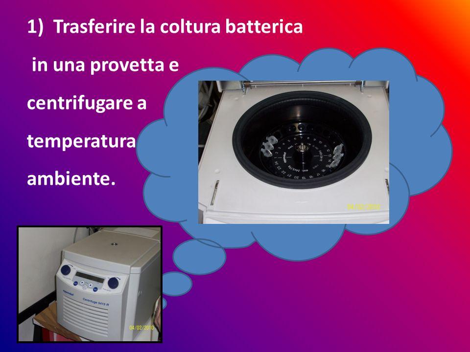 05/05/2014 1)Trasferire la coltura batterica in una provetta e centrifugare a temperatura ambiente.