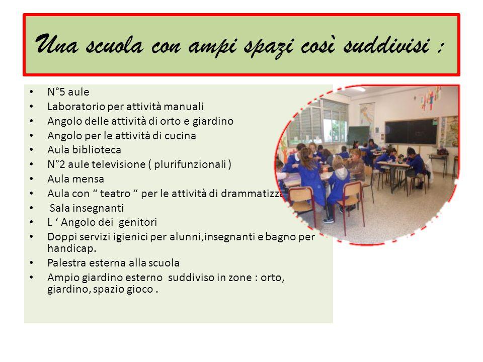 Una scuola con ampi spazi così suddivisi : N°5 aule Laboratorio per attività manuali Angolo delle attività di orto e giardino Angolo per le attività d