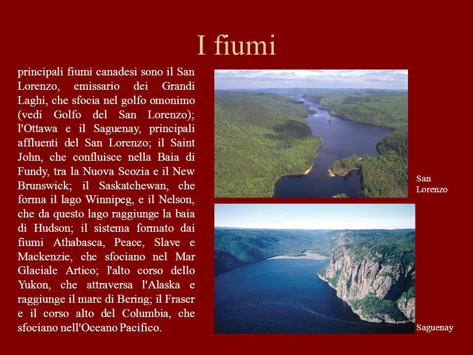 I fiumi principali fiumi canadesi sono il San Lorenzo, emissario dei Grandi Laghi, che sfocia nel golfo omonimo (vedi Golfo del San Lorenzo); l'Ottawa