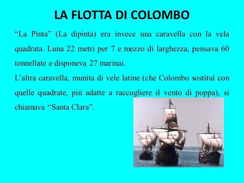 LA FLOTTA DI COLOMBO La Pinta (La dipinta) era invece una caravella con la vela quadrata. Luna 22 metri per 7 e mezzo di larghezza, pensava 60 tonnell