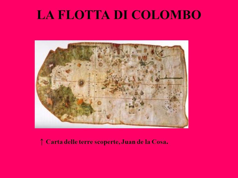 LA FLOTTA DI COLOMBO Carta delle terre scoperte, Juan de la Cosa.