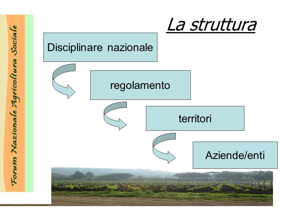 La struttura Disciplinare nazionale regolamento territori Aziende/enti Disciplinare nazionale