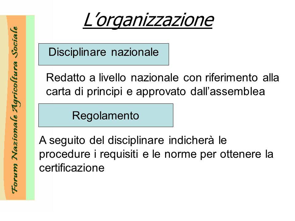 Lorganizzazione Disciplinare nazionale Redatto a livello nazionale con riferimento alla carta di principi e approvato dallassemblea Regolamento A seguito del disciplinare indicherà le procedure i requisiti e le norme per ottenere la certificazione