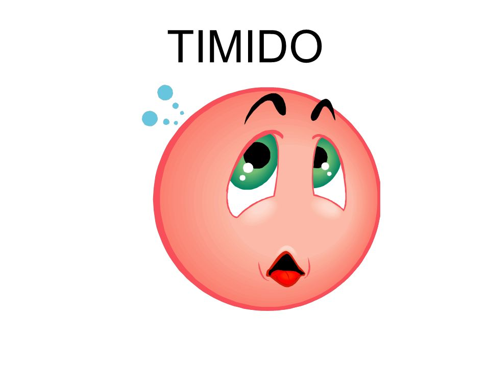 TIMIDO