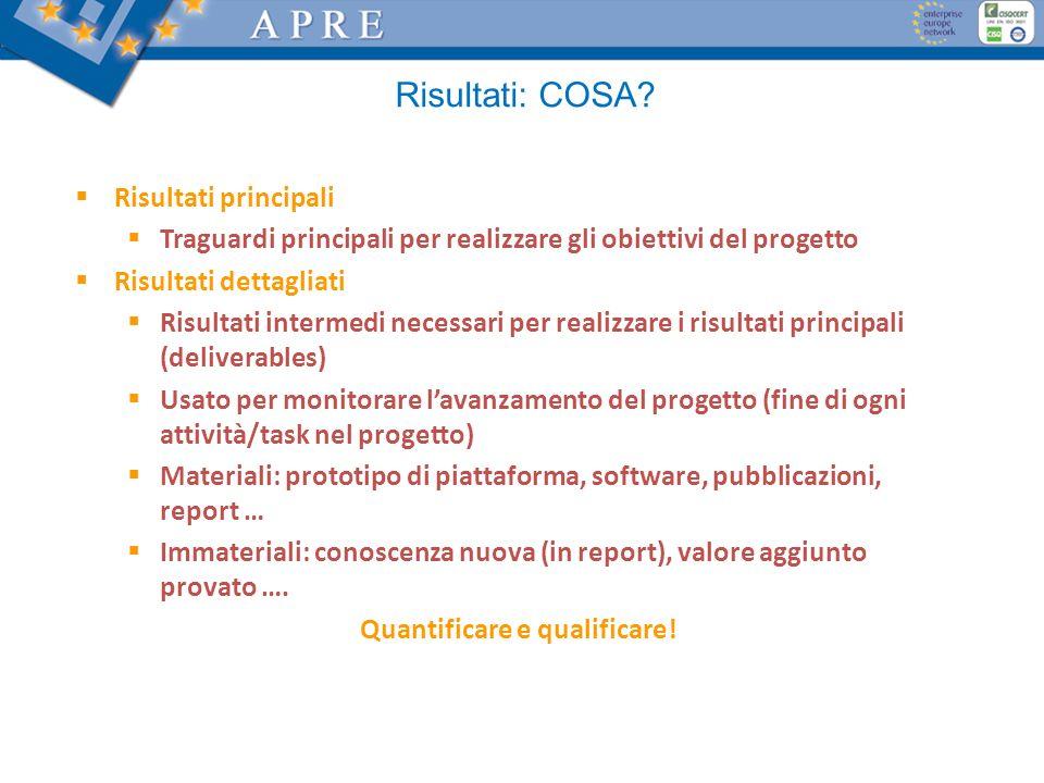 Risultati: COSA? Risultati principali Traguardi principali per realizzare gli obiettivi del progetto Risultati dettagliati Risultati intermedi necessa