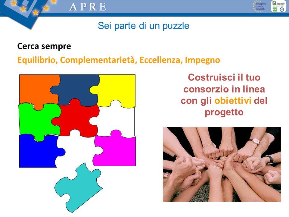 Sei parte di un puzzle Costruisci il tuo consorzio in linea con gli obiettivi del progetto Cerca sempre Equilibrio, Complementarietà, Eccellenza, Impegno