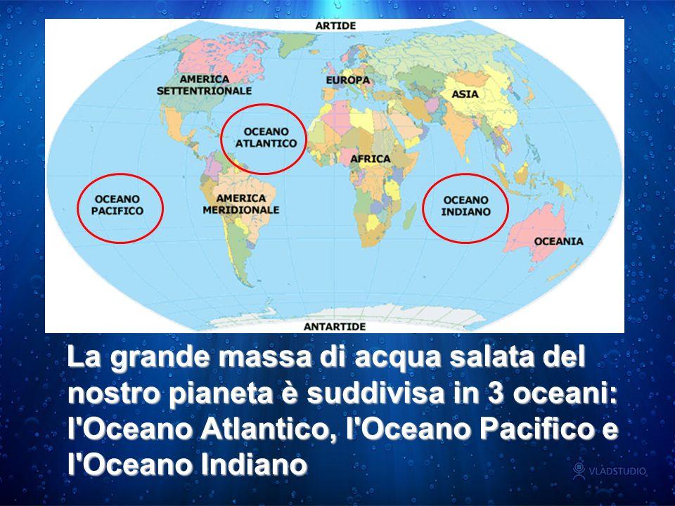 La grande massa di acqua salata del nostro pianeta è suddivisa in 3 oceani: l'Oceano Atlantico, l'Oceano Pacifico e l'Oceano Indiano La grande massa d