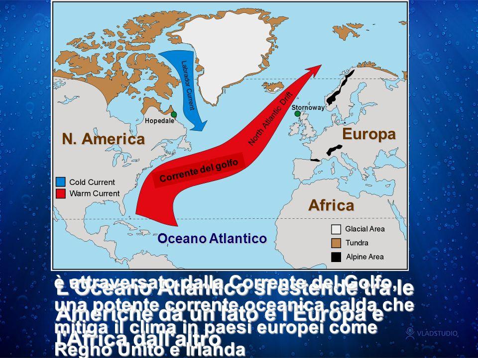 E l Oceano più grande e più profondo L Oceano Pacifico si estende tra l Asia, l Oceania e le Americhe Occupa una superficie che è superiore a quella delle terre emerse E davvero immenso.