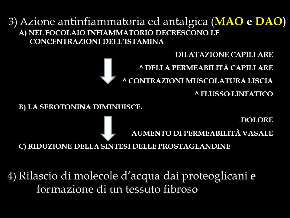 3) A zione antinfiammatoria ed antalgica ( MAO e DAO) A) NEL FOCOLAIO INFIAMMATORIO DECRESCONO LE CONCENTRAZIONI DELLISTAMINA DILATAZIONE CAPILLARE ^