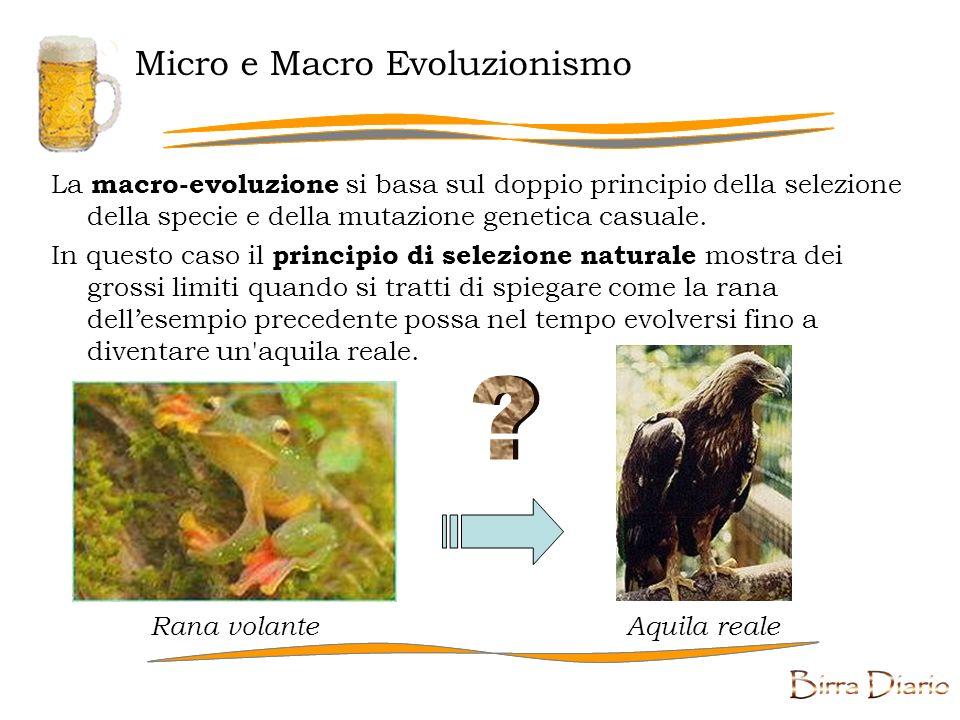 Micro e Macro Evoluzionismo La macro-evoluzione si basa sul doppio principio della selezione della specie e della mutazione genetica casuale.