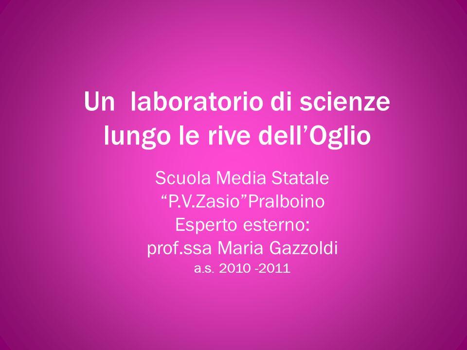Un laboratorio di scienze lungo le rive dellOglio Scuola Media Statale P.V.ZasioPralboino Esperto esterno: prof.ssa Maria Gazzoldi a.s.