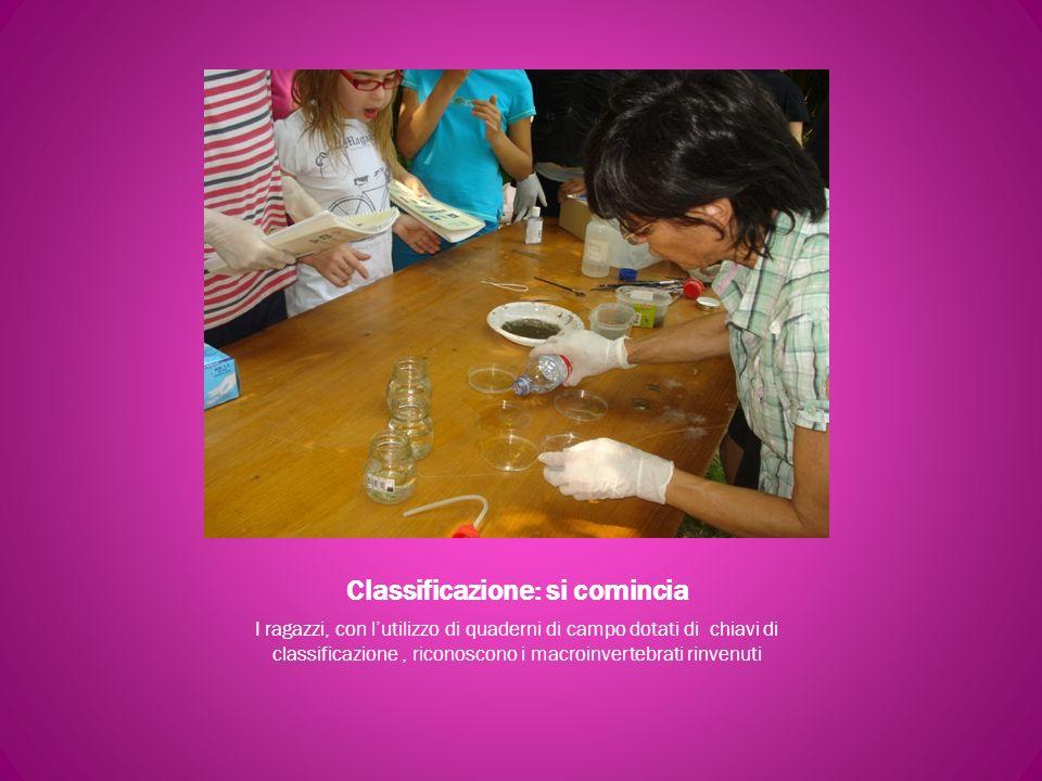 Classificazione: si comincia I ragazzi, con lutilizzo di quaderni di campo dotati di chiavi di classificazione, riconoscono i macroinvertebrati rinven
