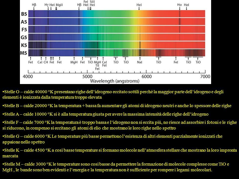 Stelle O – calde 40000 °K presentano righe dellidrogeno eccitato sottili perché la maggior parte dellidrogeno e degli elementi è ionizzata dalla tempe