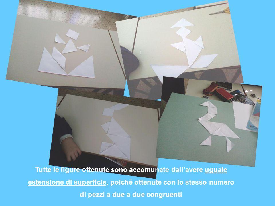 Tutte le figure ottenute sono accomunate dallavere uguale estensione di superficie, poiché ottenute con lo stesso numero di pezzi a due a due congruen