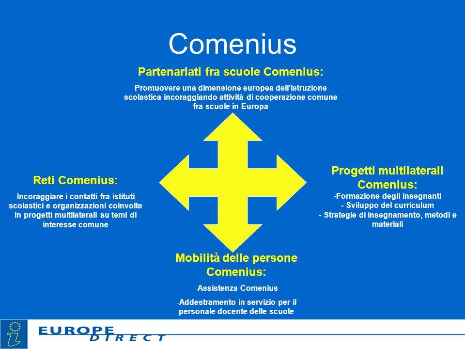 Comenius Partenariati fra scuole Comenius: Promuovere una dimensione europea dellistruzione scolastica incoraggiando attività di cooperazione comune f