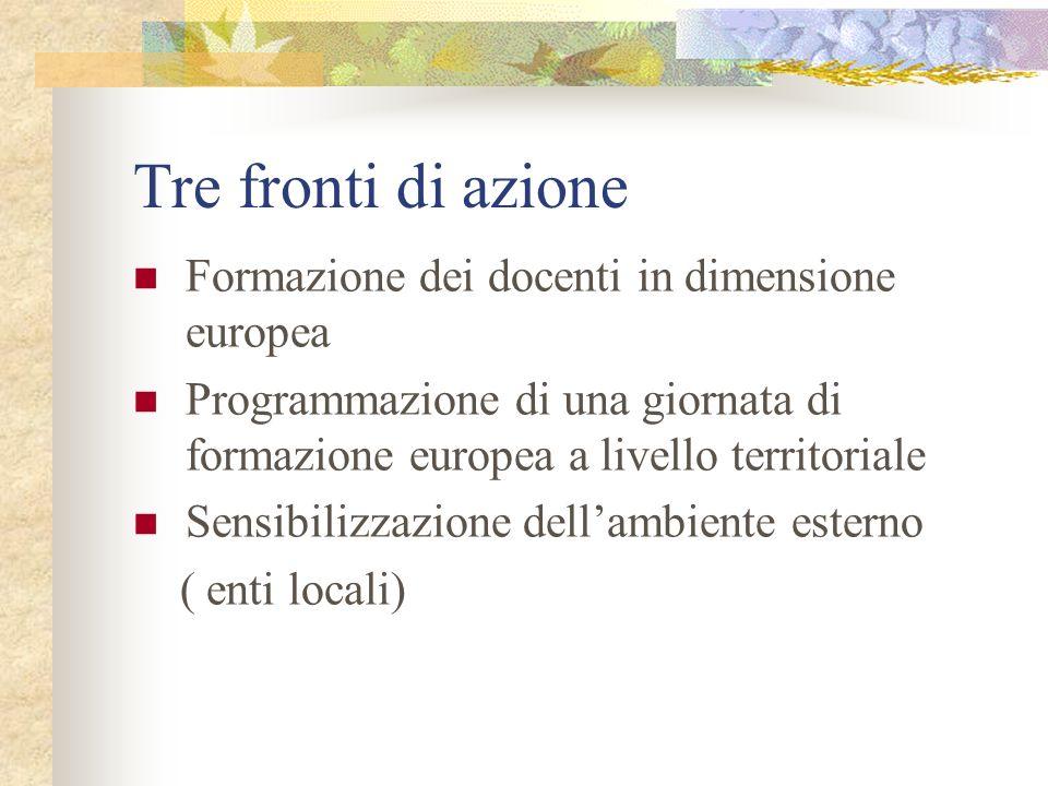 Tre fronti di azione Formazione dei docenti in dimensione europea Programmazione di una giornata di formazione europea a livello territoriale Sensibilizzazione dellambiente esterno ( enti locali)