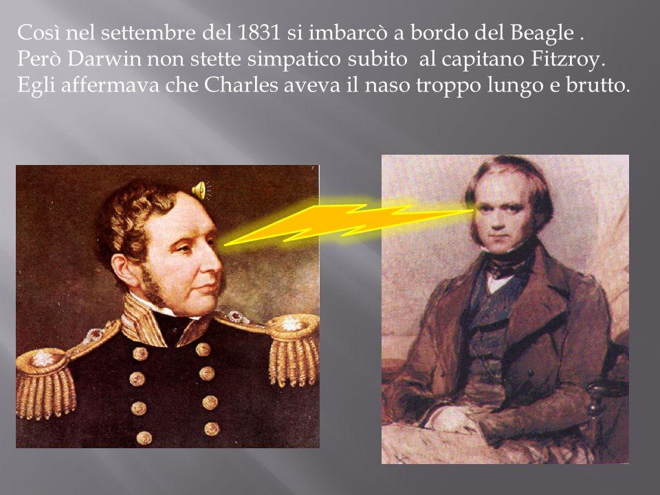 Così nel settembre del 1831 si imbarcò a bordo del Beagle. Però Darwin non stette simpatico subito al capitano Fitzroy.