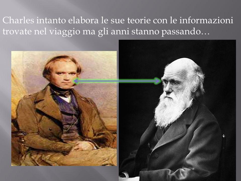 Il viaggio durò 5 anni e nel 1836 Charles tornò a casa. Darwin quando fu nella sua dimora, a Down, analizzò campioni di specie animali e vegetali, che