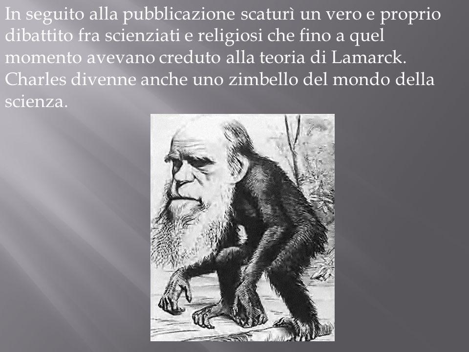 Così Charles decise di battere sul tempo il rivale e pubblicò una sintesi del suo pensiero intitolato Lorigine della specie. Fu una vera e propria gar