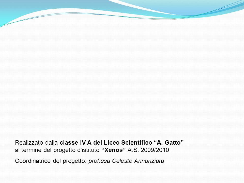 Realizzato dalla classe IV A del Liceo Scientifico A. Gatto al termine del progetto distituto Xenos A.S. 2009/2010 Coordinatrice del progetto: prof.ss
