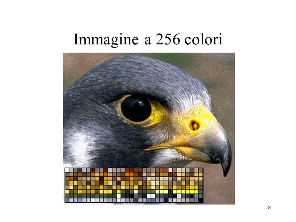 18 Limiti dello spazio colore XYZ Esperimenti effettuati su volontari mostrano che ad uguali variazioni di colore, intese come uguali spostamenti all interno dello spazio colore X Y Z, non corrispondono uguali differenze nella percezione degli stessi.