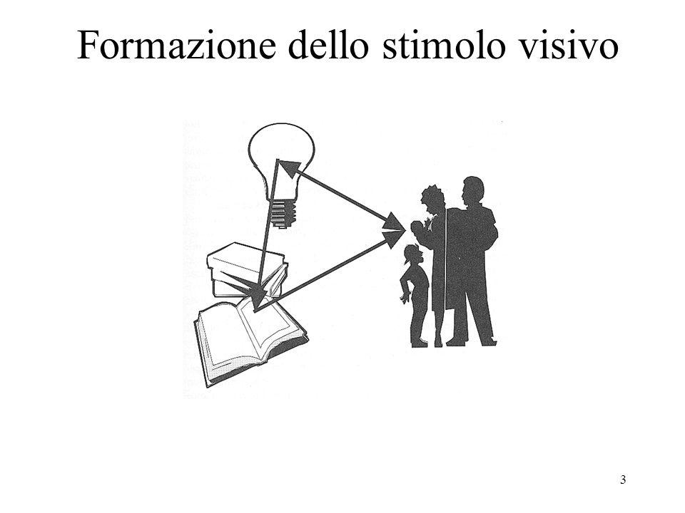 3 Formazione dello stimolo visivo