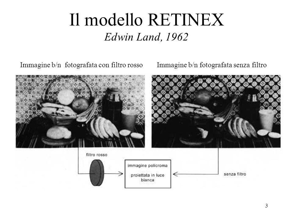 3 Il modello RETINEX Edwin Land, 1962 Immagine b/n fotografata con filtro rossoImmagine b/n fotografata senza filtro