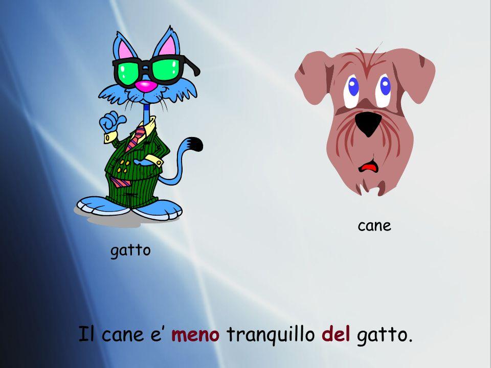 gatto cane Il cane e meno tranquillo del gatto.