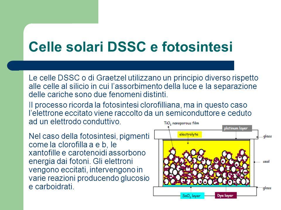 Celle solari DSSC e fotosintesi Le celle DSSC o di Graetzel utilizzano un principio diverso rispetto alle celle al silicio in cui lassorbimento della luce e la separazione delle cariche sono due fenomeni distinti.