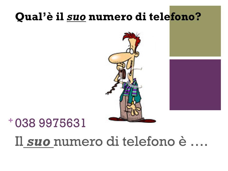 + 038 9975631 Il suo numero di telefono è …. Qualè il suo numero di telefono?