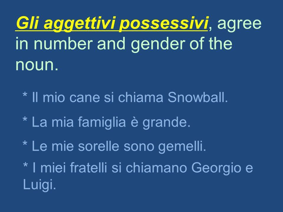 Gli aggettivi possessivi, agree in number and gender of the noun. * Il mio cane si chiama Snowball. * La mia famiglia è grande. * Le mie sorelle sono