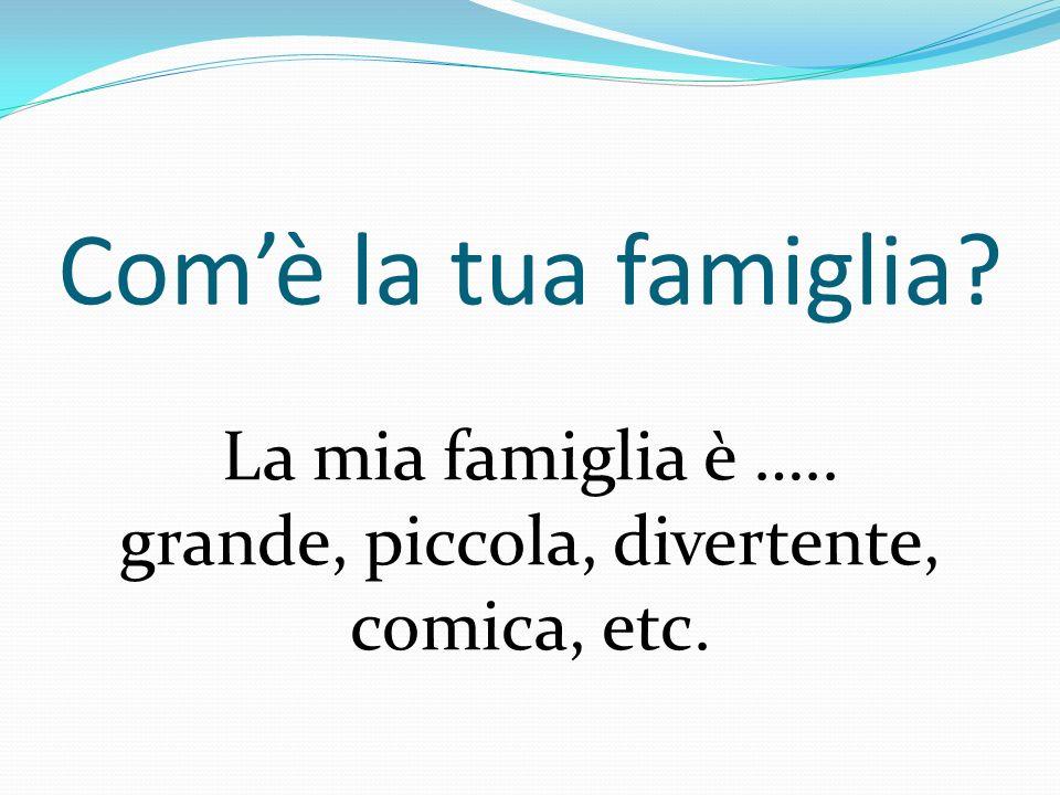 Comè la tua famiglia? La mia famiglia è ….. grande, piccola, divertente, comica, etc.