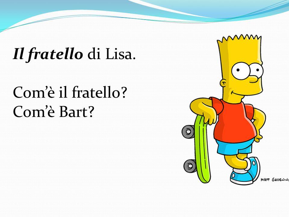Il fratello di Lisa. Comè il fratello? Comè Bart?